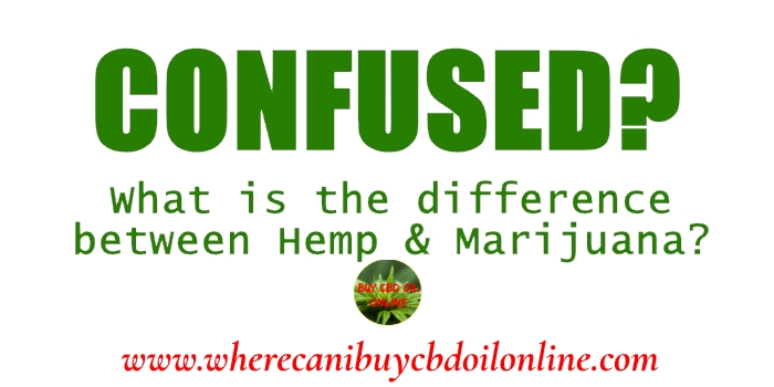 difference between hemp and msrijuans