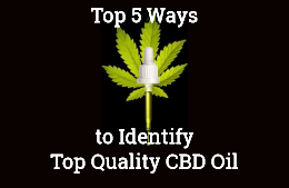 top quality cbd oil